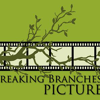 Breaking Branches Pictures