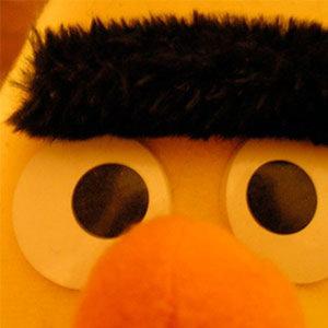 Profile picture for Jochen Wild