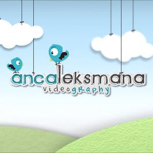 Profile picture for ancaleksmana videography