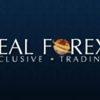 Real-Forex