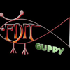 Edit Guppy Post Production