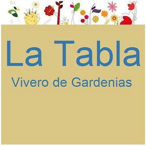 Profile picture for La Tabla