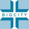 bigcitypix