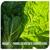marissa horticulture
