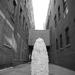 Evan Mann / OWP Denver