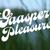 Gaasper Pleasure