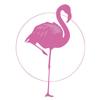 Pink Flamingo Studios