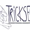 TrickserTonträger