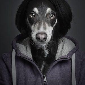 Profile picture for BRODZELi
