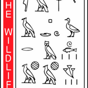 Profile picture for The Wildlife Society