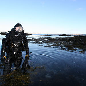 Profile picture for diveexplorer