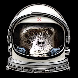 Profile picture for Bunker Monkey