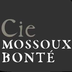 Profile picture for Cie Mossoux-Bonté