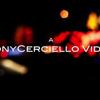 TonyCerciello Videos