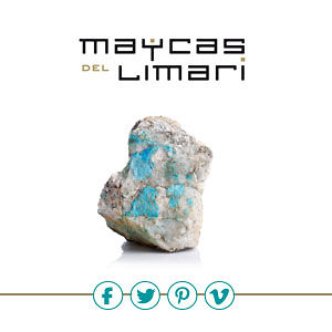 Profile picture for Maycas Del Limarí