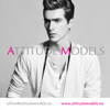 Attitude Models