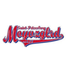 #moyvzglyadvideo