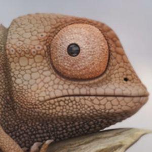 Profile picture for Boris LAPRADE