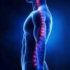 Best Scoliosis Exercises