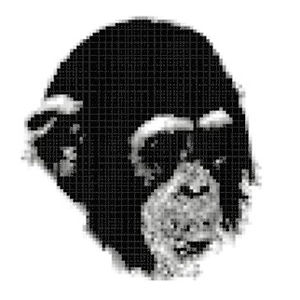 Profile picture for Logosapiens