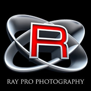 Profile picture for RAY PRO