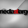 Media at Large - Shashi Balooja