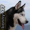 kenny977
