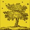 Yellow Tree Theatre