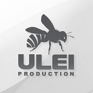 Profile picture for Ulei Production