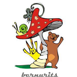 Profile picture for Bernu Rits