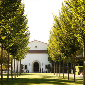 Professionalism and Personal Development at Sunny Scripps College