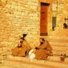 Poor Friars