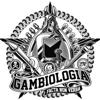 gambiologia