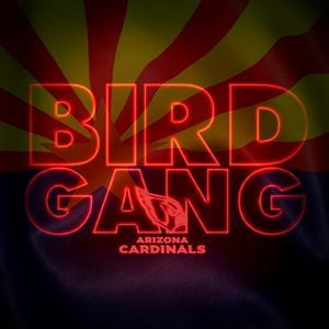 Profile picture for Bird Gang AZ