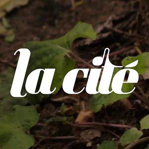 Profile picture for La Cité