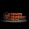 Never Summer Industries