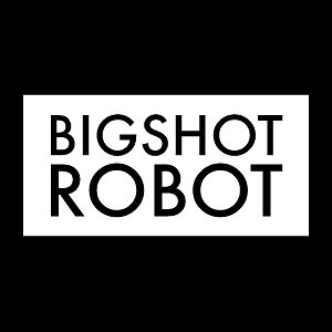 Profile picture for Bigshot Robot