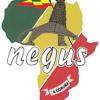 Negus Foundation