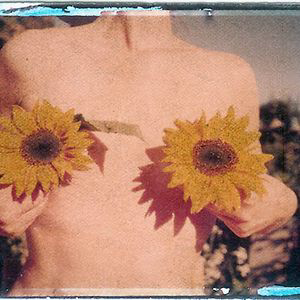 Profile picture for The Sunflower Connection