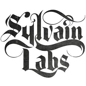 Profile picture for Sylvain Labs