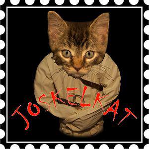 Profile picture for Joshua Keller Katz