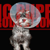 Sic Puppy Productions