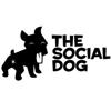 thesocialdog