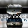 Bokehbokeh