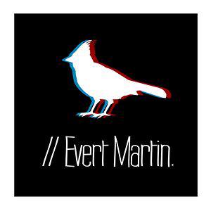 Profile picture for Evert martin