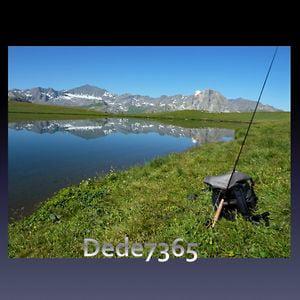 Profile picture for dede7365