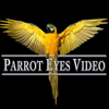 Parrot Eyes Video