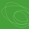 Avocado Artists