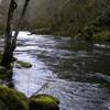 Fishing Addicts Northwest
