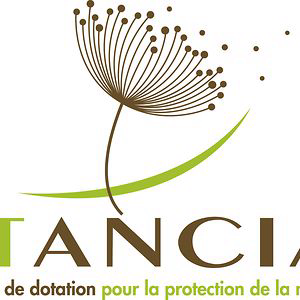 Profile picture for Fonds de dotation Itancia